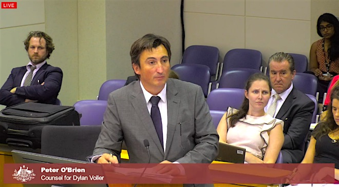 Peter O'Brien Representing Dylan Voller in the NT Royal Commission