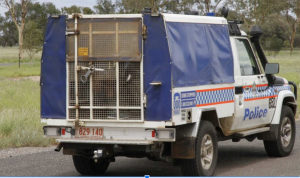 NT Police Cage Vehicle