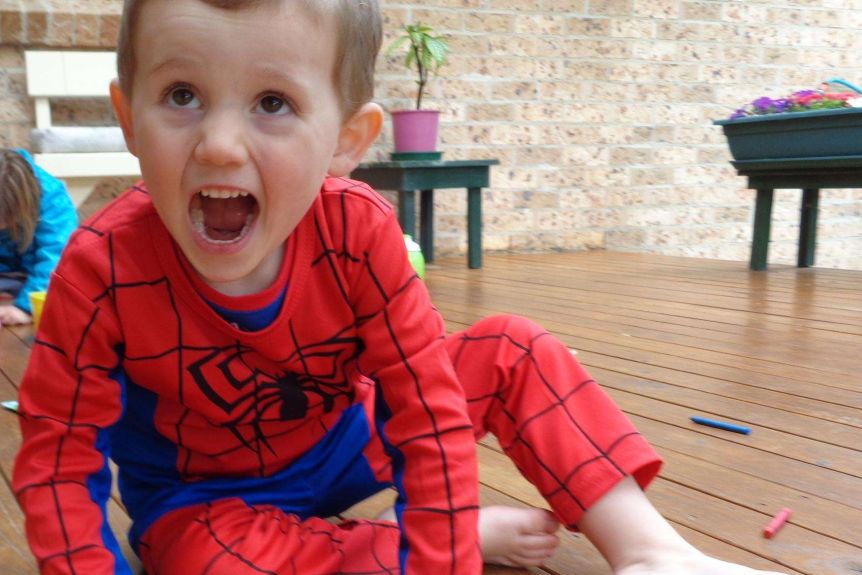 Three-year-old William Tyrrell (pictured) went missing in 2014