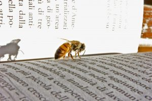Defamatory sting is indicated by a bee on the printed word